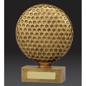 13917C Golf Trophy 185mm