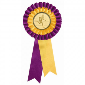 ROS-E-PY Achievement Ribbon