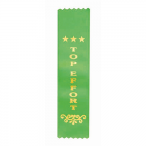 Z25 Achievement Ribbon
