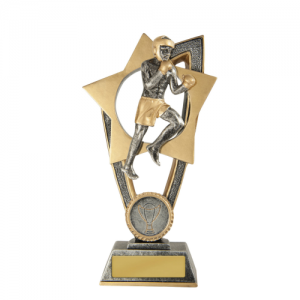 10A-FIN32B Martial Arts Trophy 175mm