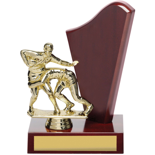 X8197 Perpetual Trophy 200mm